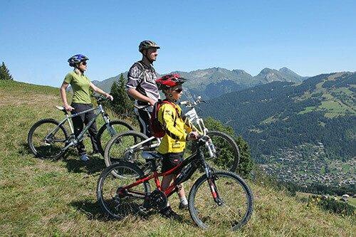 family-alpine-holidays-morzine-box